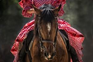 Das kulturelle Erbe Andalusiens 2
